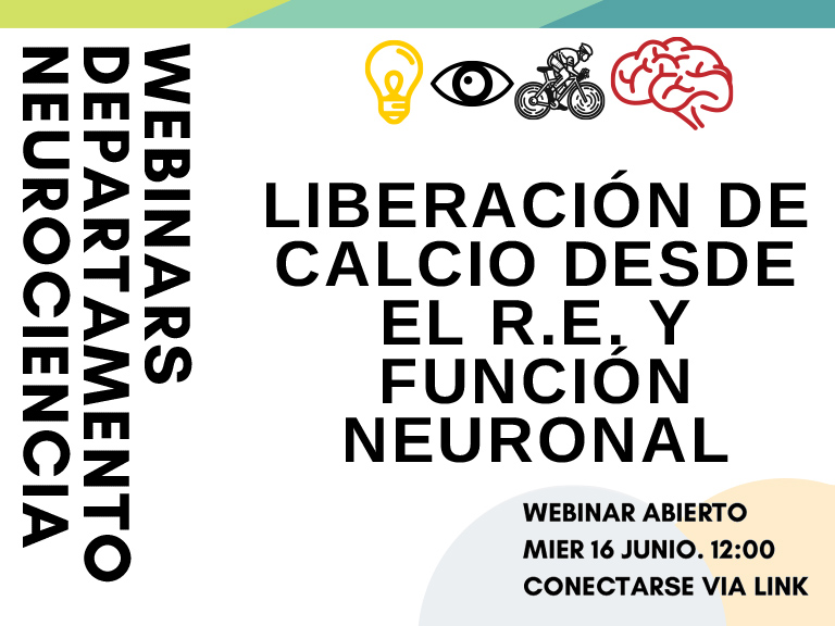 Sociedad Chilena De Neurociencia Chilean Society For Neuroscience Young Neuroscientists Symposium The Sociedad Chilena De Neurociencia Scn Invites Phd Students Postdocs And Young Researchers At Initial